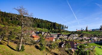 Jung Referenzen Relais Chateaux Hotel Dollenberg Bad Peterstal