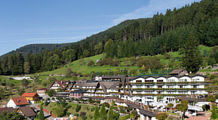 Relais & Chateaux Hotel Dollenberg, Bad Peterstal